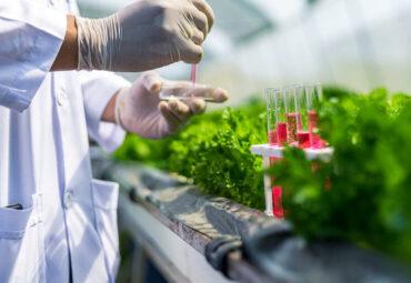 AgroSustain Fungicide